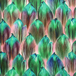 Digital print: Tulip scales organic jersey, light pink - teal